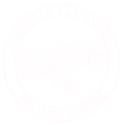 Mickler's Landing Turtle Patrol